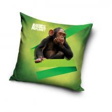 Carbotex povlak na polštářek Animal Planet Šimpanz micro 40x40 cm