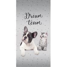 Detexpol plážová osuška Sweet Animals Dream Team 70x140 cm