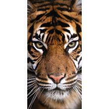 Jerry Fabrics plážová osuška Tygr 70x140 cm