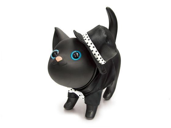 Černá a krásná kočička