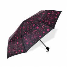 Albi Deštník